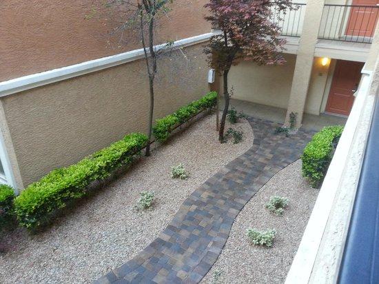 Desert Rose Resort: Courtyard