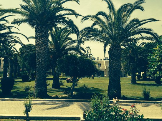Holiday Village Kos by Atlantica: Hotel Grounds