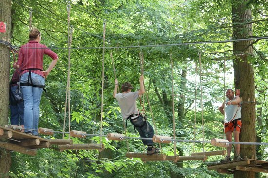 Woody Park : Parcours vertigo