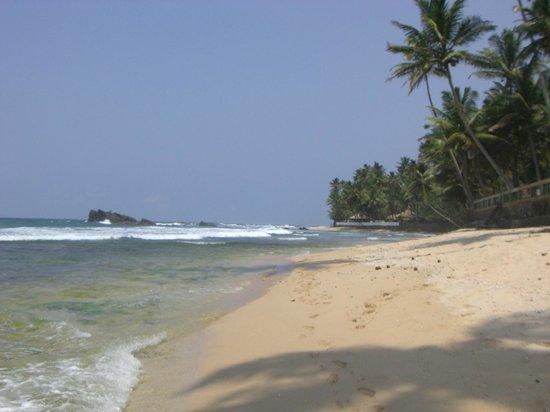 Rockside Cabanas : Wie im Paradies