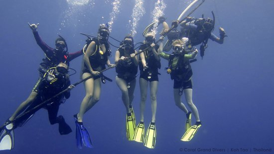 Coral Grand Divers : Under water, the coolest thing