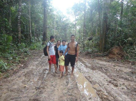 Amazon Rainforest: Caminhando na Floresta
