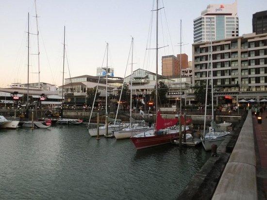 Viaduct Harbour: レストランなど並ぶにぎやかなエリア