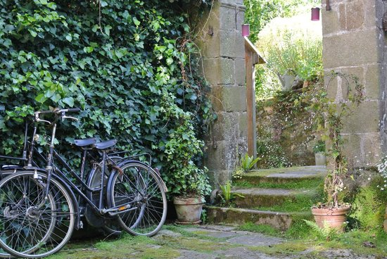 Les Korrigann'ès : Jardin