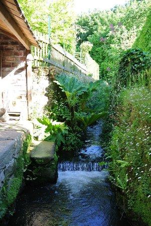 Les Korrigann'ès : ruisseau dans le jardin