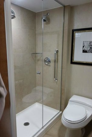 Hilton Garden Inn New York/West 35th Street: Shower