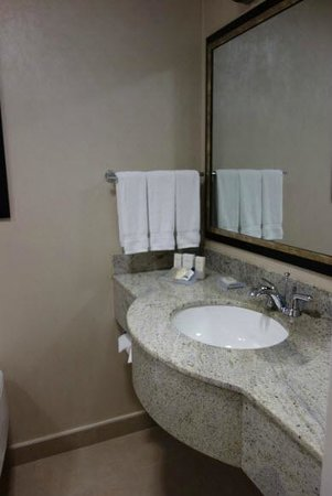 Hilton Garden Inn New York/West 35th Street: Bathroom