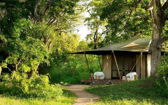 andBeyond Ngala Tented Camp: Ngala Tented Camp vue tente