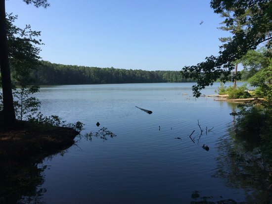 Fort Yargo State Park: View of the lake