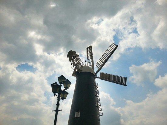 Waltham Windmill: The Windmill