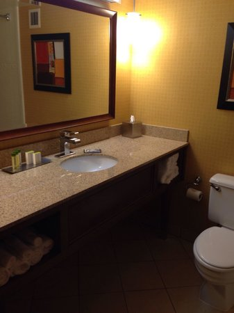 DoubleTree by Hilton Johnson City: Bathroom