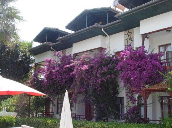 Photo of Gizaldi Apart Hotel Dalyan