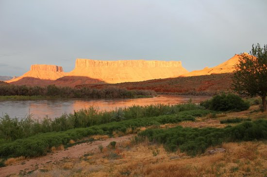 Red Cliffs Lodge: Colorado River View