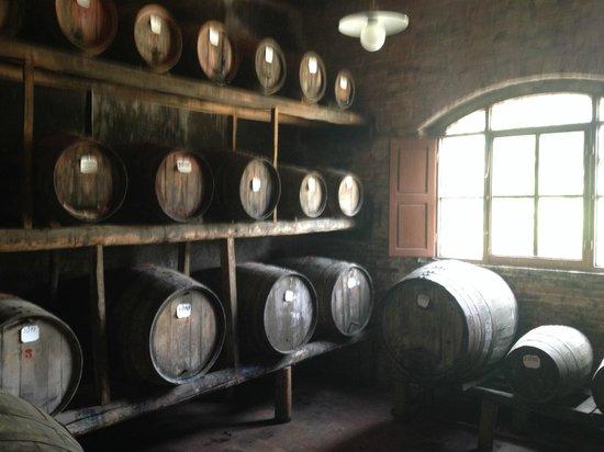 Fattoria Santa Vittoria: Aging sweet Vin Santo wine 4-7 years in old oak casks using a centuries-old oxygenation method
