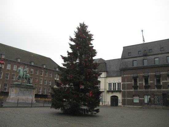 Altstadt: Рождественская ель
