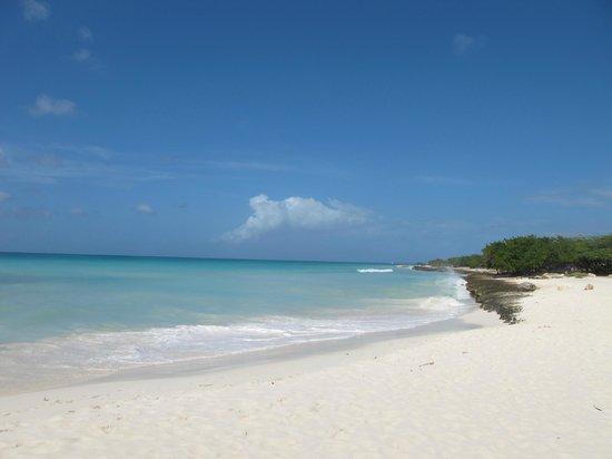 Eagle Beach: Белый песок