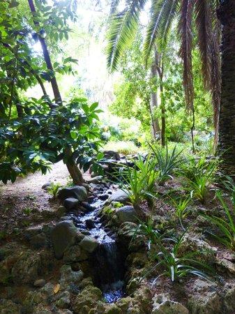 La Concepcion Jardin Botanico Historico de Malaga: Like being lost in a jungle