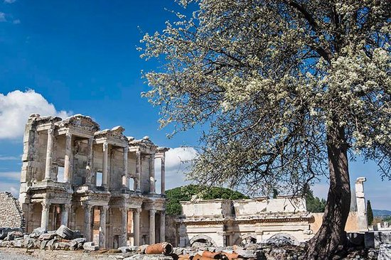 Celsus-Bibliothek: Celsus from a new angle
