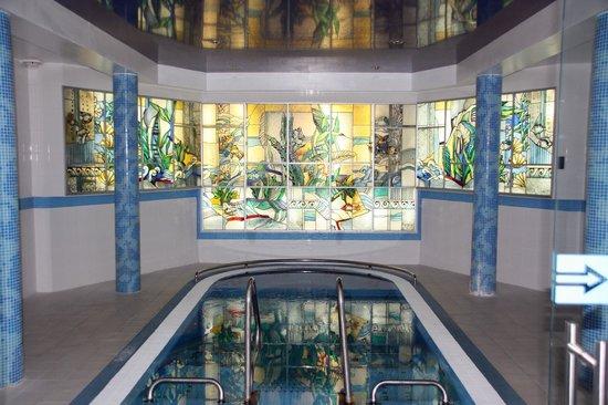 Violeta Viesbutis Hotel : Pool