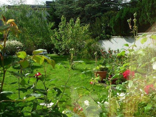 Villa les Roses : La vue du jardin