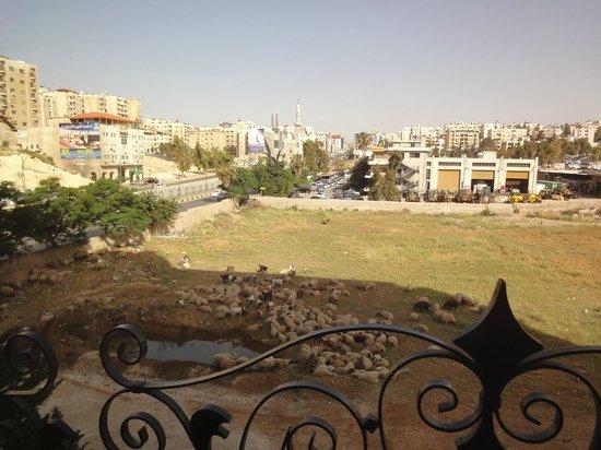 Jerusalem International : Vue depuis la chambre