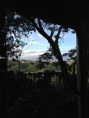Finca Rosa Blanca Coffee Plantation Resort : Morning view
