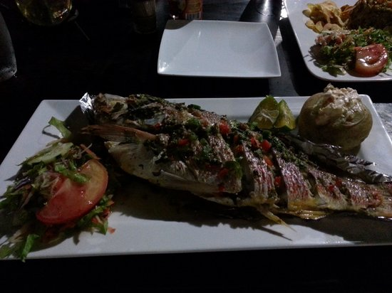 El Arado Restaurant: Grilled red snapper - the best I had in CR