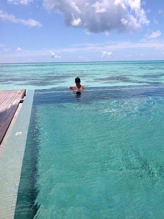 LUX* South Ari Atoll: Pool