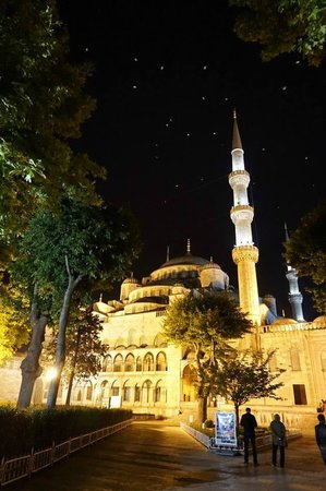 Alzer Hotel: Blue Mosque with night gulls