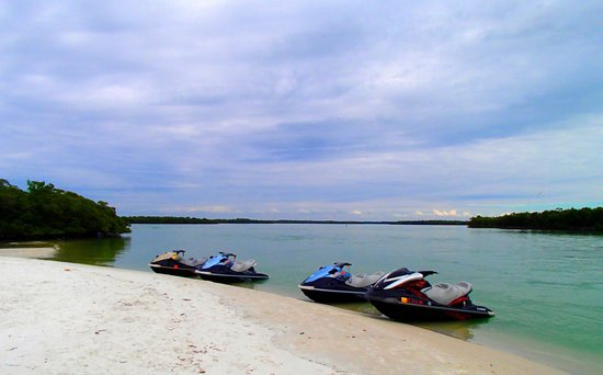Capt. Ron's Awesome Everglades Adventures: Parked at the island for shelling