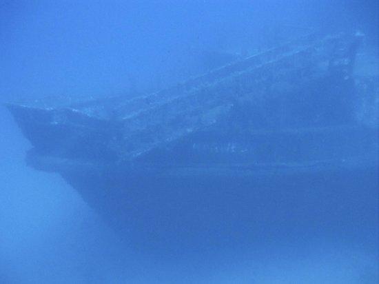 Moby Dives: Karwela Wreck