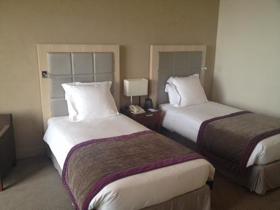 Hilton Evian-les-Bains: twin bed