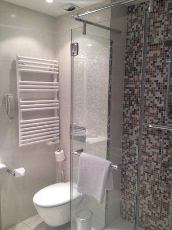 Hilton Evian-les-Bains: salle de bains avec douche...