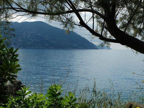 Villaggio Smeraldo : Vue du terrain