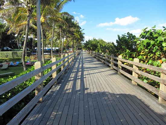 Holiday Inn Miami Beach: Boardwalk behind the hotel