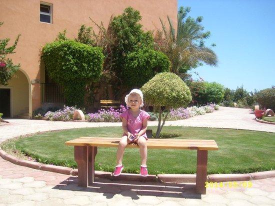 The Three Corners Sunny Beach Resort: ОТДЫХ