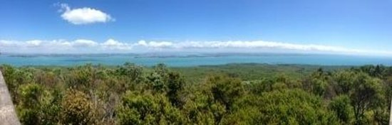 Rangitoto Island : View from the summit, fantastic