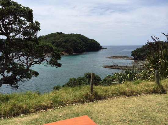 Goat Island Marine Reserve: There a picnic tables where you can have lunch