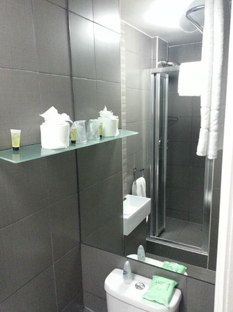Eden Plaza Kensington : Shower room