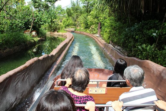 River Safari: Amazon River Quest Boat Ride