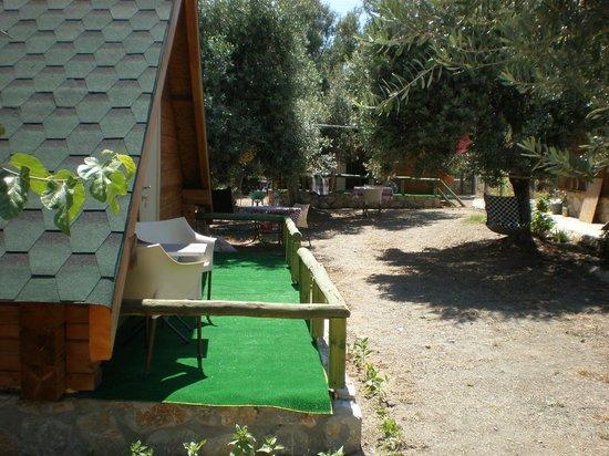 DatcAnka Ahsap & Kutuk Evler: Kütük ev - Bahçe
