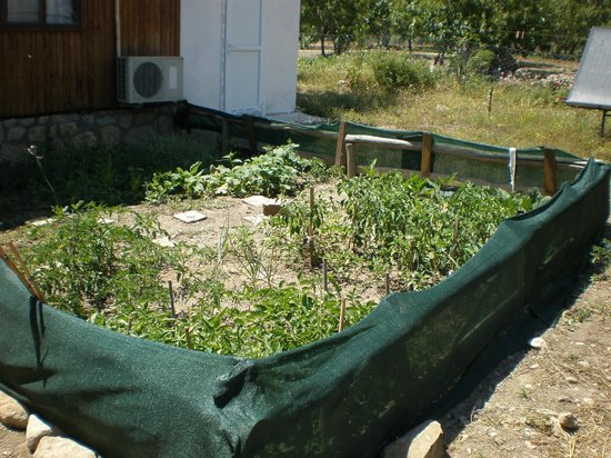 DatcAnka Ahsap & Kutuk Evler: Bahçemiz
