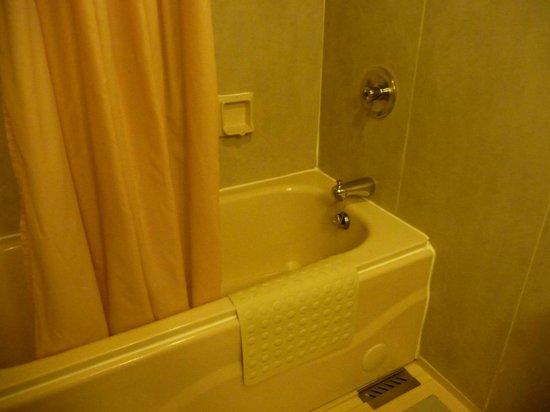 Summit Parkview Hotel : Room #327 bathroom
