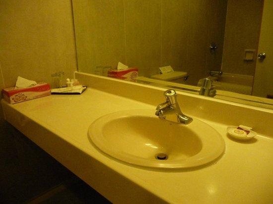 Summit Parkview Hotel: Room #327 bathroom