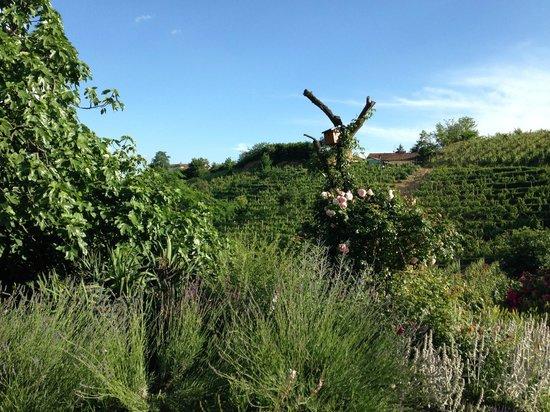 Casa Isabella: Vista del giardino