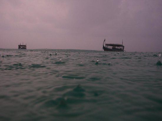 VOI Maayafushi Resort: Märzregen