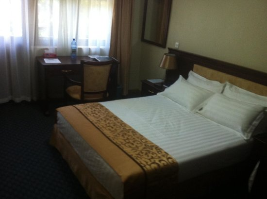 Hill View Hotel & Aparts : Room