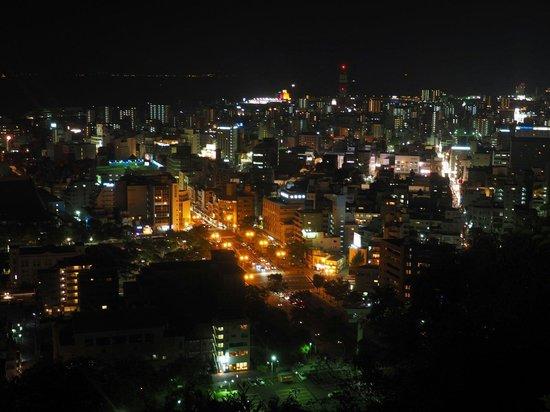 Mt. Shiroyama: Kagoshima by night