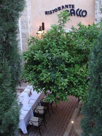 Elysium Hotel: Всюду ухоженная зелень и цветы.