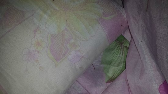 This is a pillow that my friend slept on in Hostel Riad Mama Marrakech. Zoom in to see a bedbug.